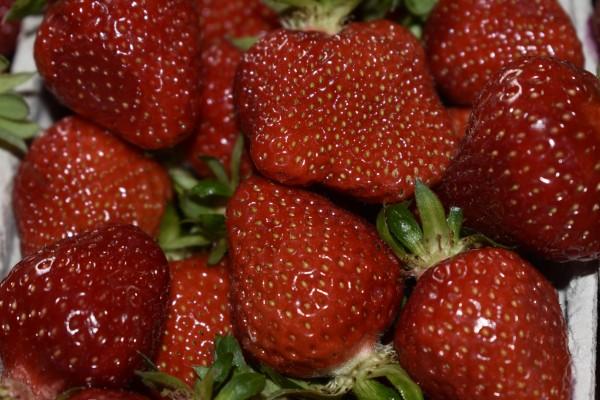 getrocknete Erdbeeren aus dem Breisgau